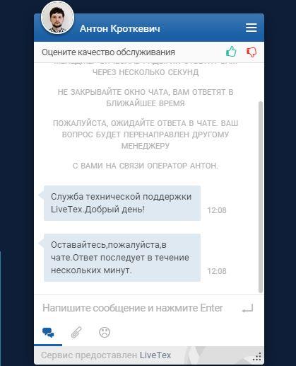 окно чата Livetex