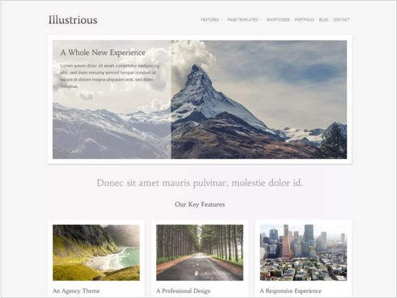 тема для WordPress Illustrious