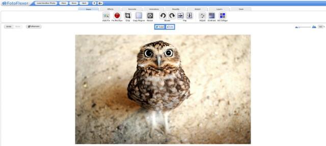 редактор изображений FotoFlexer