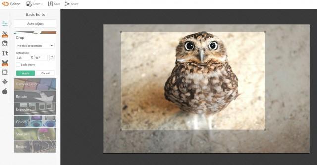 редактор изображений PicMonkey's Photo Editor