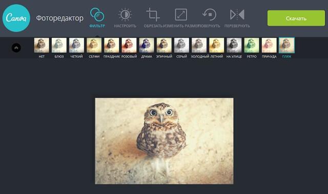редактор изображений Canva