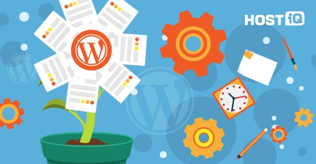5 плагинов для WordPress