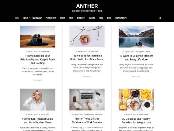 wordpress тема Anther