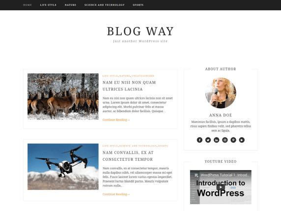 wordpress тема Blog Way