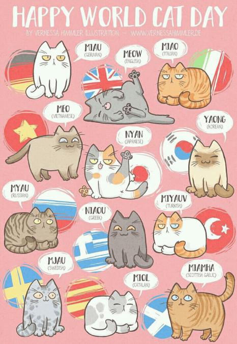 Картинках мультиязычных котов