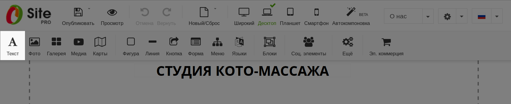 Элемент «Текст» в панели управления конструктором