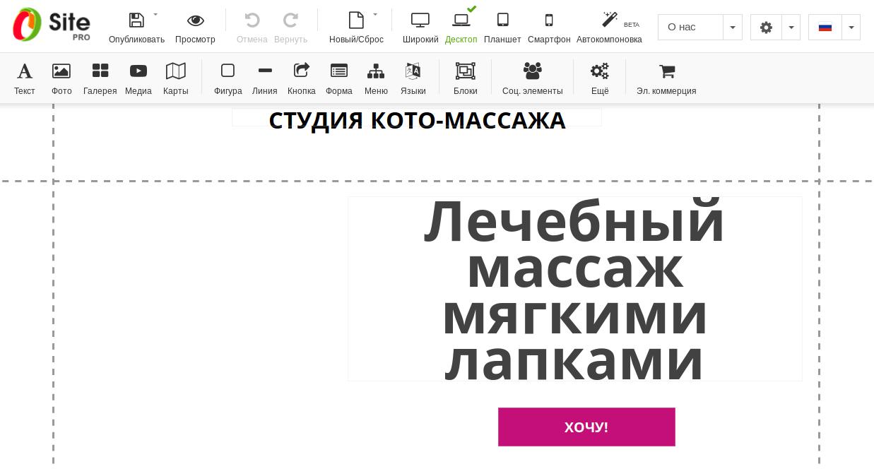 Заголовок с кнопкой на сайте