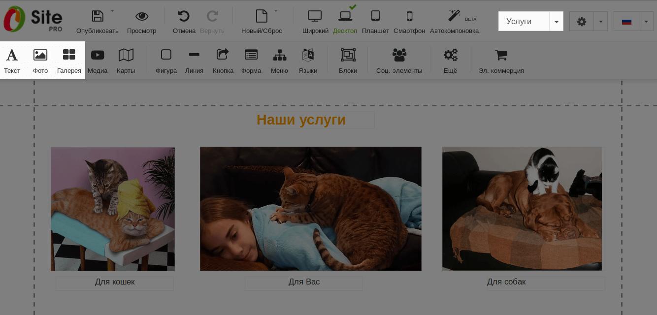 Элементы «Текст», «Фото» и «Галерея» в панели управления конструктором
