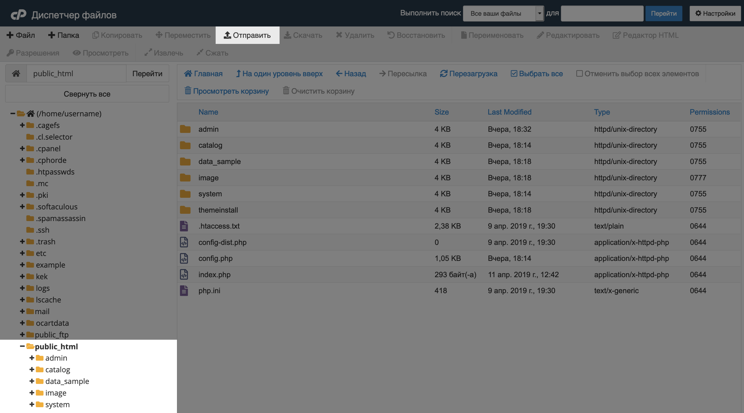 Корневая папка домена в «Диспетчере файлов» в cPanel