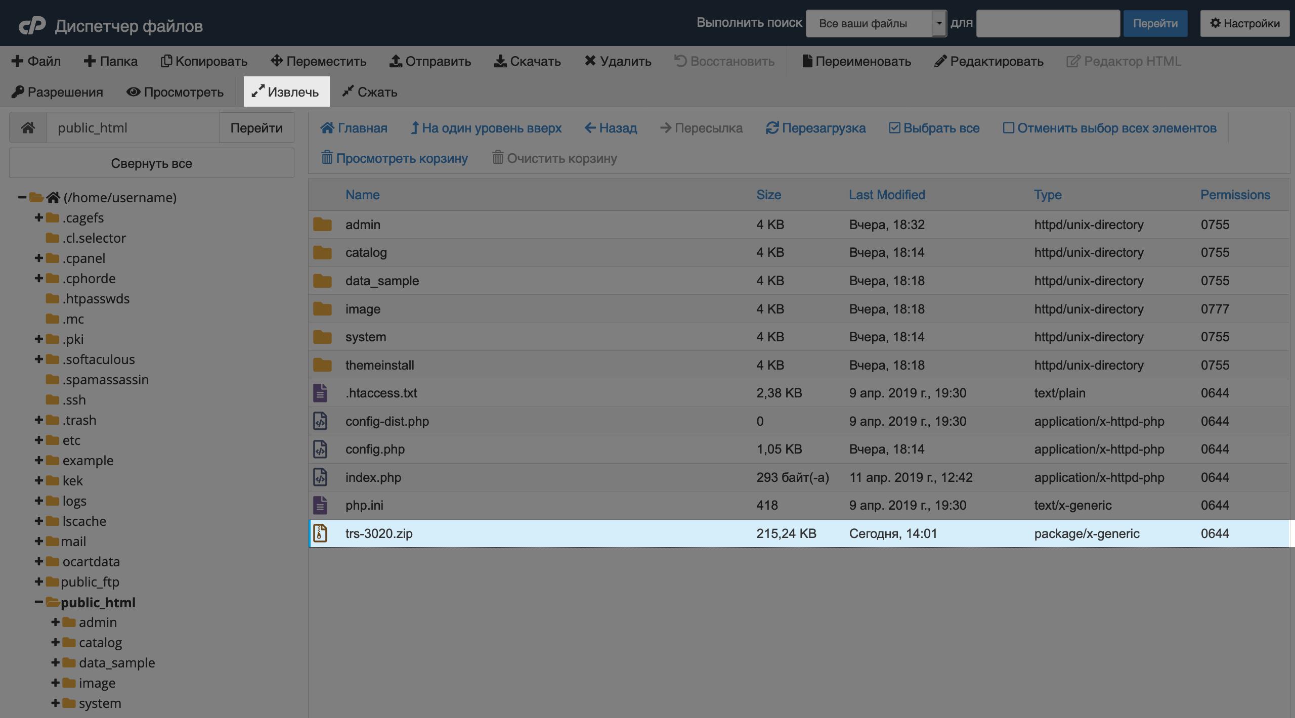 Только что загруженный файл в корневой папке домена