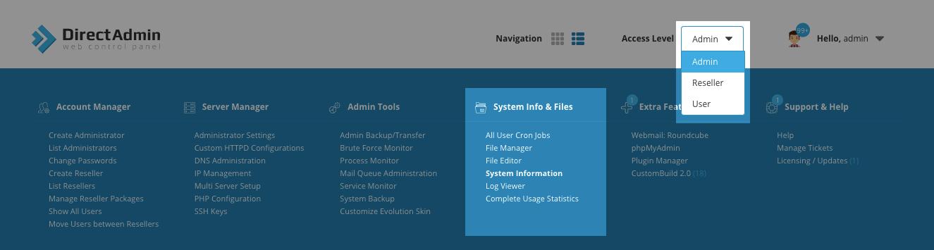 Раздел System Info & Files в DirectAdmin