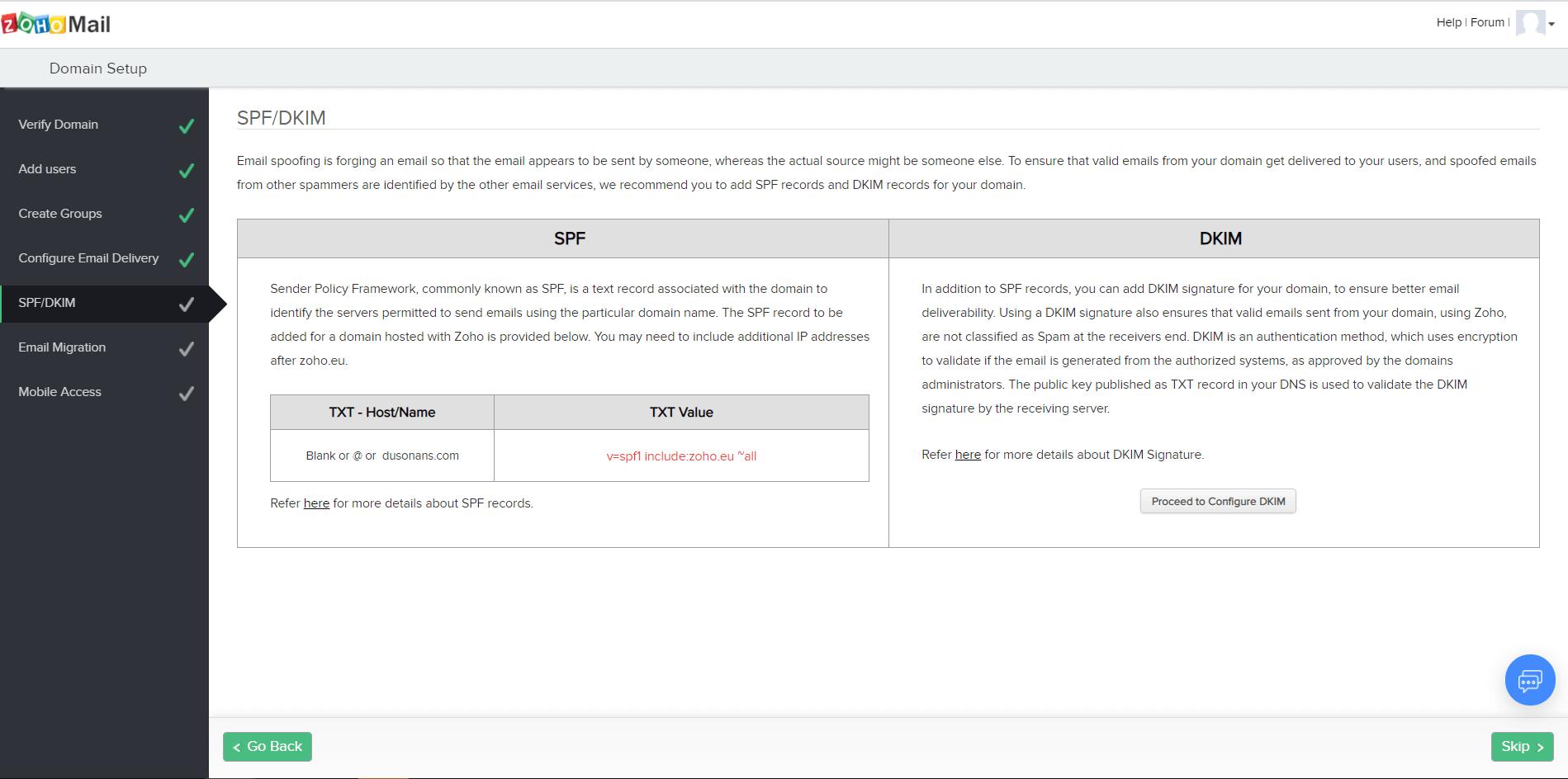 Как создать почтовый ящик на своем домене. Страница со значениями записей SPF и DKIM.